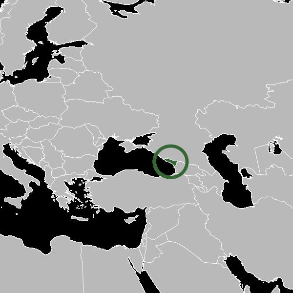 la situacion de Abjasia (A) en gran resolucion